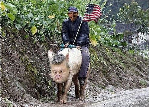 обама на свинье